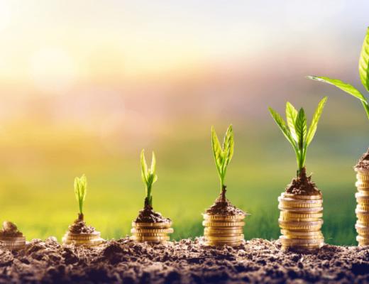 TOP 15 MONEY INVESTMENT IDEAS